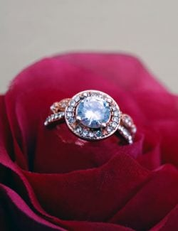 Blogger Outreach Service on Jewelry Website